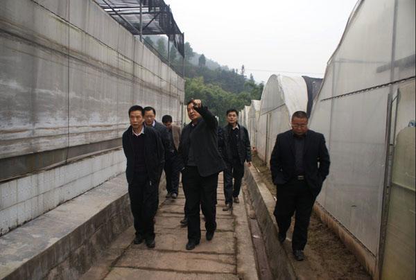 南江县人口_南江扶贫在行动
